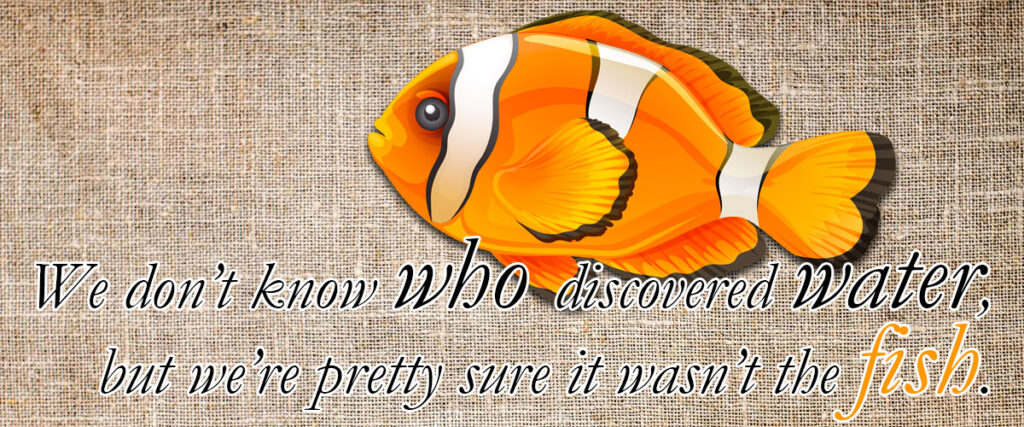 fish-did-not-discover-water